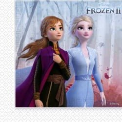 Disney Frozen Ice Magic salvrätikud