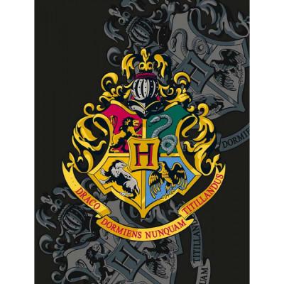 Harry Potter fliistekk